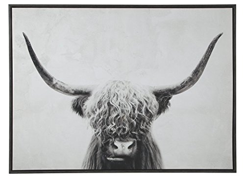 Ashley A8000258 Pancho Wall Art, Black/White ()