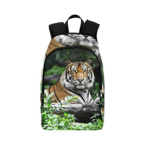 (JXCSGBD Bengal Tiger Forest Show Head Leg Stock Photo Casual Daypack Travel Bag College School Backpack for Mens and Women)