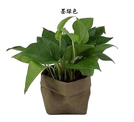Junlinto Lavable Sac en Papier Kraft Plantes Fleurs Pots Multifonction Sac De Rangement À La Maison Réutiliser LKG - Argent (8x8x15cm)