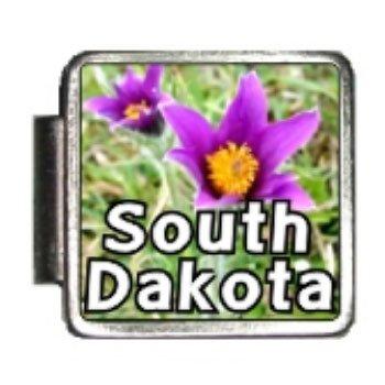 South Dakota State Flower Pasque Flower Photo Italian Charm Bracelet Link - Italian Modular 9mm Photo Charm