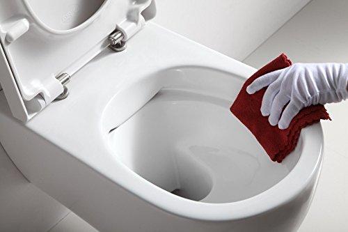 Strange Hansvit Stein Rimless Toilet And Seat 545 Mm White Buy Pdpeps Interior Chair Design Pdpepsorg