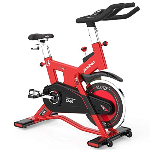 L NOW Indoor Cycling Bike Exercise Bike Stationary with 40lb Flywheel- Commercial Standard for Home Cardio Workout C580