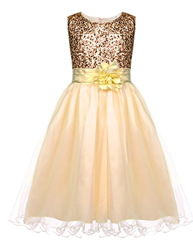 HOTOUCH Flower Girl Dress Kids Ruffles Lace Party Wedding Gown Dresses Gold 10T