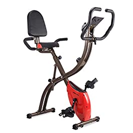 iDeer Life Magnetic Foldable Exercise Bike, Cardio Workout I...