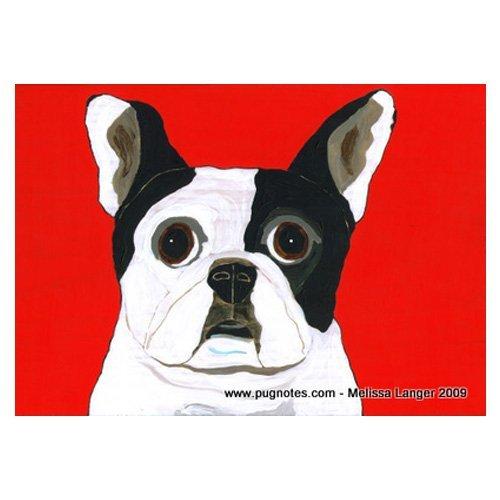 Bulldog Pied French (Pied French Bulldog Print by Melissa Langer)
