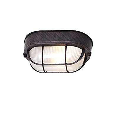 Truelite Industrial Vintage Mini Ellipse Indoor Ceiling Fixture Metal Caged with Glass Exterior Wall Sconce