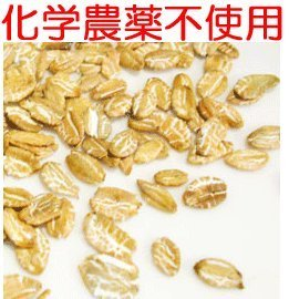 Rye flakes 2Kg chemical synthesis pesticide nonuse cultivation additive-free OTCO certified products by Importer Slow Food Kitchen