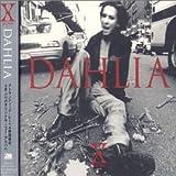 Dahlia [Import allemand]
