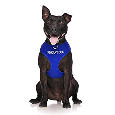 THERAPY DOG Blue Color Coded Non-Pull Front and Back D Ring Padded and Waterproof Vest Dog Harness PREVENTS Accidents By Warning Others Of Your Dog In Advance