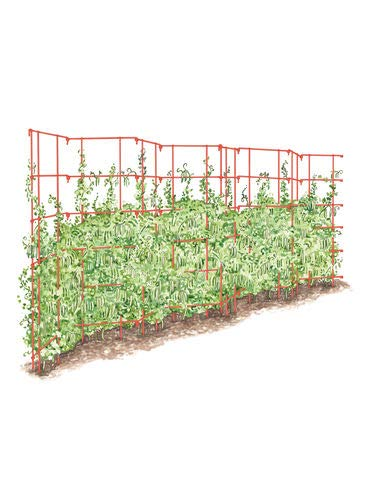 - Gardener's Supply Company Expandable Pea Trellis
