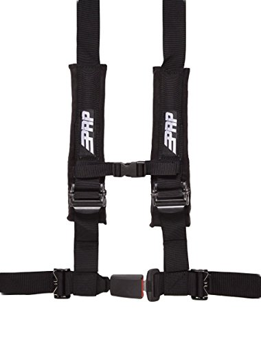 rzr 4 point harness - 3