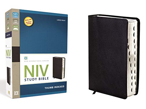 NIV Study Bible, Large Print, Bonded Leather, Black, Indexed, Red Letter Edition