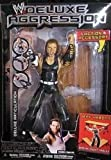 WWE Deluxe figure s Series 7- Jeff Hardy 131002fnp [parallel import goods]