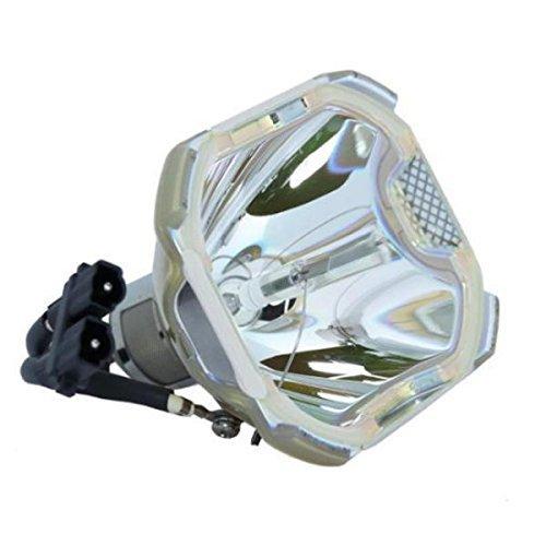 Rich Lighting プロジェクター 交換用 ランプ MPLK-D1 (裸電球) AVIO アビオニクス プロジェクター iP-750 対応 [180日保証] B07F3ZPVJ2