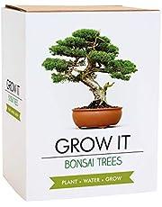Gift Republic Grow It cadeauset Bonsai-plantenset