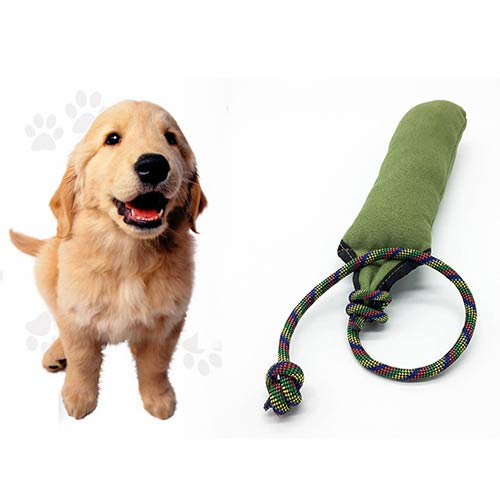 2PC Dog Play Training Toys Pet Training Tracking Bite Toy Oxford Chewing Toy Pet Interactive Training Toy