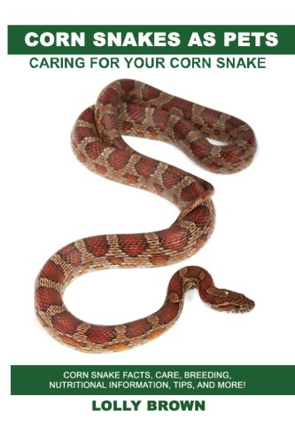 Corn Snakes as Pets: Corn Snake facts, care, breeding, nutritional information, tips, and more! Caring For Your Corn Snake