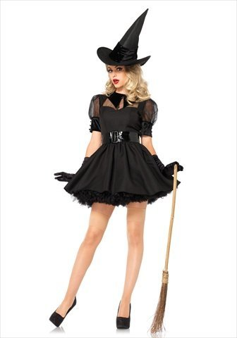 Bewitching Witch Adult Costume -