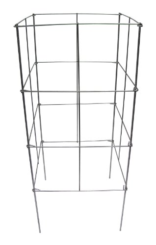 Glamos 701642 16-Inch Wide by 42-Inch High Heavy Duty Stackable Square Plant Support (Glamos Wire compare prices)