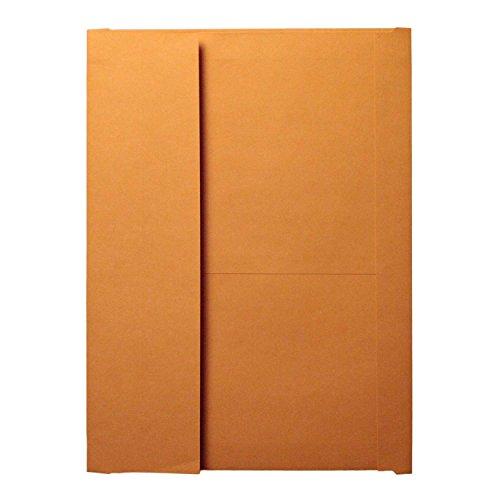 10 x 15 x 2 Brown Envelopes, Kraft Stock, 2