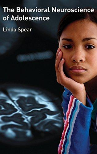 The Behavioral Neuroscience of Adolescence