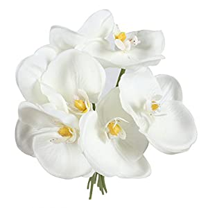 Duovlo 14'' Phalaenopsis Orchid Flower Fake Simulation Butterfly Artificial Branches Home Wedding Decoration,Pack of 1 58