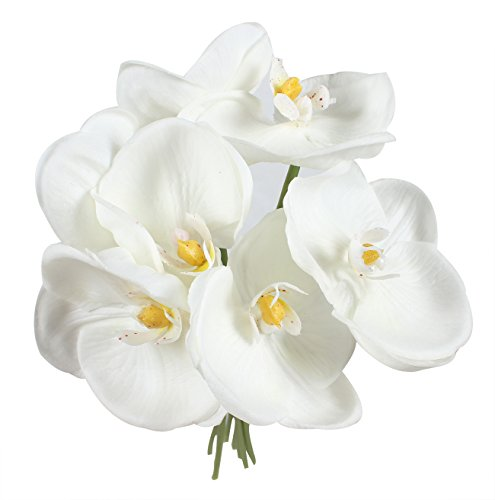 Flower Orchid Phalaenopsis (Duovlo 14'' Phalaenopsis Orchid Flower Fake Simulation Butterfly Artificial Branches Home Wedding Decoration,Pack of 1)