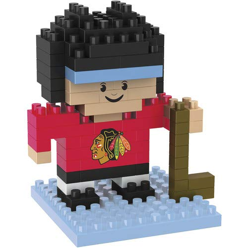 Chicago Blackhawks 3D Brxlz -