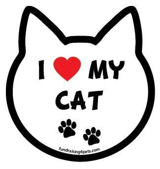 Love Cat cat head magnet