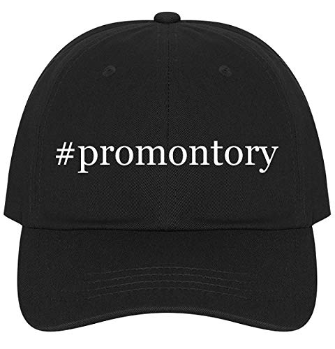 The Town Butler #Promontory - A Nice Comfortable Adjustable Hashtag Dad Hat Cap, Black