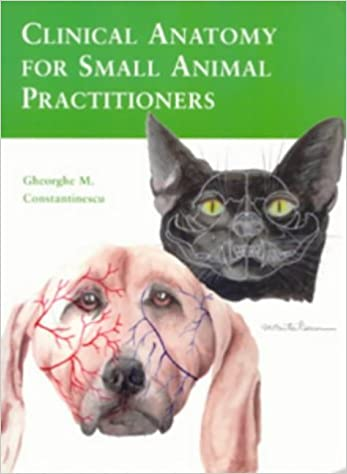 Clinical Anatomy for Small Animal Practitioners: Gheorghe M ...