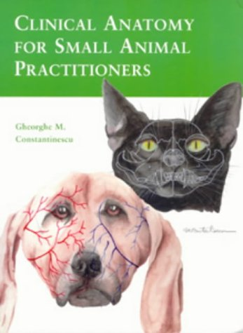 Clinical Anatomy For Small Animal Practitioners Gheorghe M