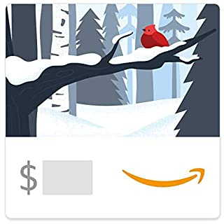 Amazon eGift Card - Holiday Forest (B07K2KXRXN) | Amazon price tracker / tracking, Amazon price history charts, Amazon price watches, Amazon price drop alerts
