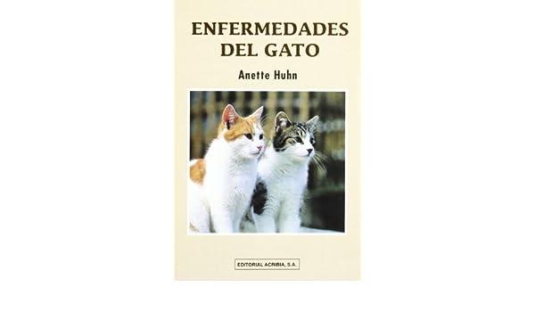 Enfermedades del Gato (Spanish Edition): Anette Huhn: 9788420008837: Amazon.com: Books