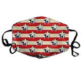 Unisex Stars Stripes USA Patriotic Printed Cotton Mouth-Masks Face Mask Polyester Anti-dust Masks