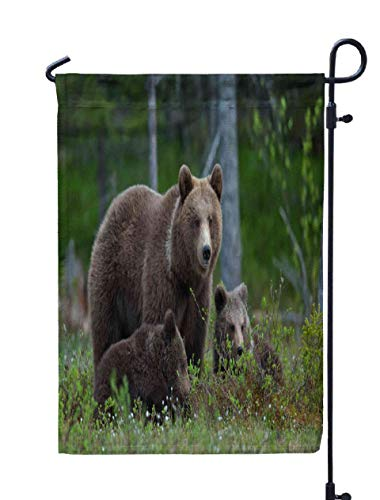 Shorping Welcome Garden Flag, 12x18Inch Bear Cubs Their Mother in The Summer Family Brown Forest Ursus arctos for Holiday and Seasonal Double-Sided Printing Yards Flags -
