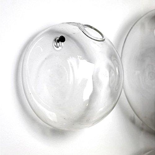 Terrarium Borosilicate Hanging Glass Flower Vase 10*8cm Wall Round Sphere Tabletop Vases Home Wedding Decoration Transparent