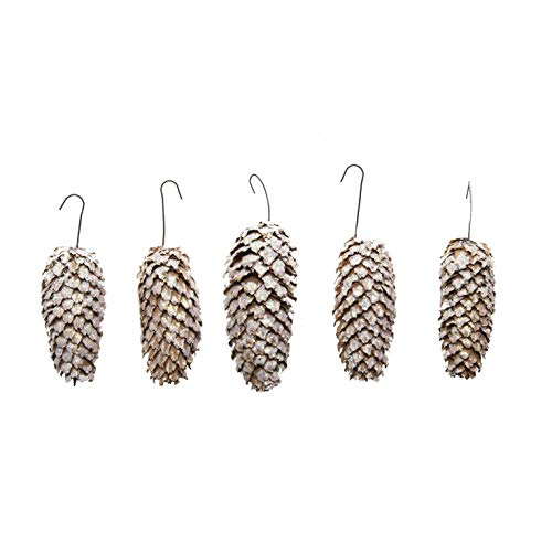 VanCortlandt Farms Silver tipped & Glittered Norwegian Spruce Cone Ornaments (set of ()