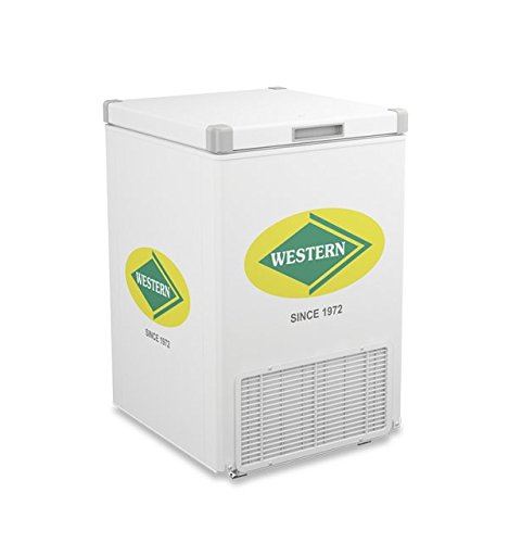 Western Deep Freezer 125 Liter
