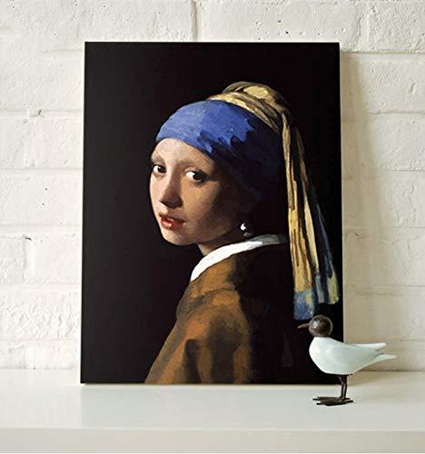 WGXCC Tragen Perle Ohrringe Mädchen Niederländischen Maler DIY Digitale Malerei Dekorative Gemälde Ohne Rahmen 40x50 cm B07HN2MDKM | Wir haben von unseren Kunden Lob erhalten.