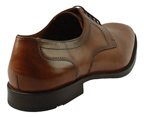LLOYD 17-167-01, Scarpe stringate uomo Marrone