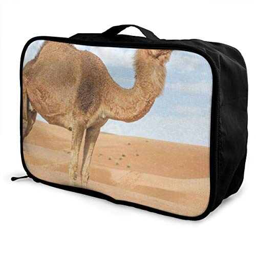 - Travel Bags India Wild Camel Portable Suitcase Designer Trolley Handle Luggage Bag