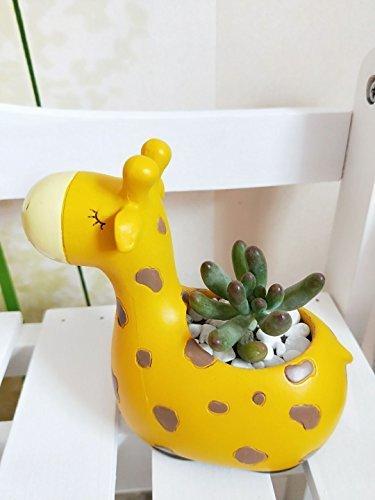 Cuteforyou Cute Animal Shaped Cartoon Home Decoration Succulent Vase Flower Pots (Cute Giraffe)