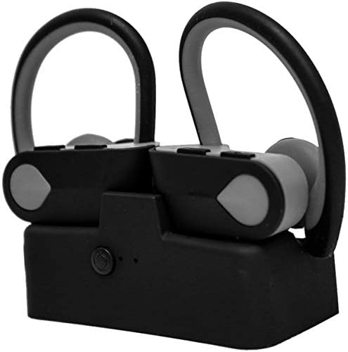True Wireless Earhook Earbuds with Charging Case