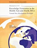 Knowledge Economies in the Middle East and North Africa: Toward New Development Strategies (WBI Development Studies)