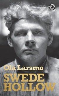 """""""Swede Hollow"""" av Ola Larsmo"""