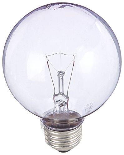 GE Lighting 42360 60 Watt Reveal