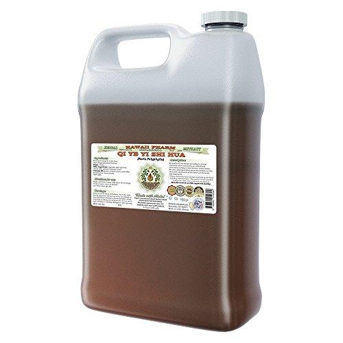 qi-ye-yi-zhi-hua-zao-xiu-chong-lou-alcohol-free-liquid-extract-qi-ye-yi-zhi-hua-zao-xiu-chong-lou-pa