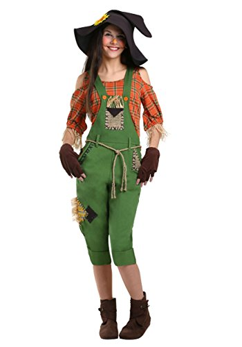 Scarecrow Womens Costume Large