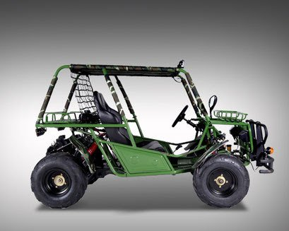 Amazoncom New 150cc Adult Size Go Kart Dune Buggy Automatic With